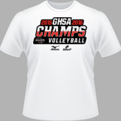 2015-2016 GHSA Volleyball Champs